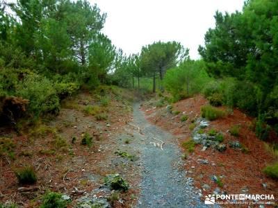 Axarquía- Sierras de Tejeda, Almijara y Alhama; rutas de trekking; rutas senderistas